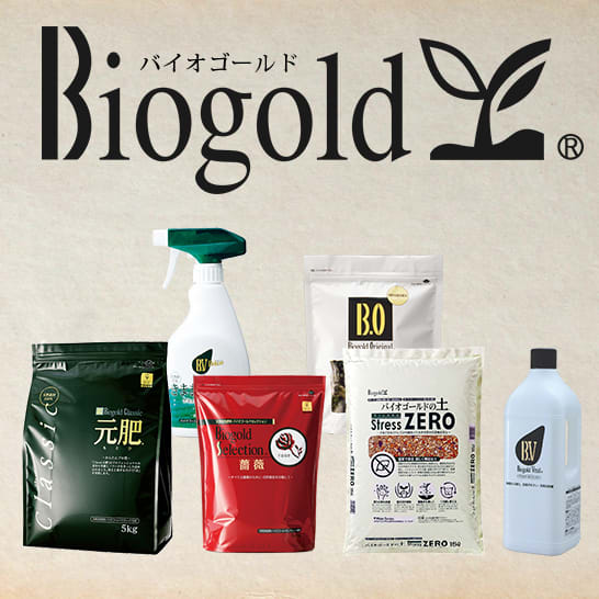 有機肥料栽培におすすめ!バイオゴールドの土・有機肥料