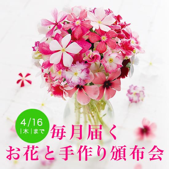 【頒布会特集】毎月届く!花・緑のお取り寄せ