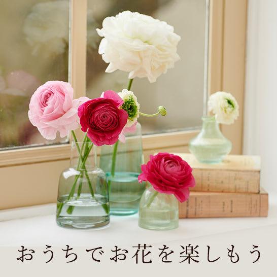 おうちでお花を楽しもう!