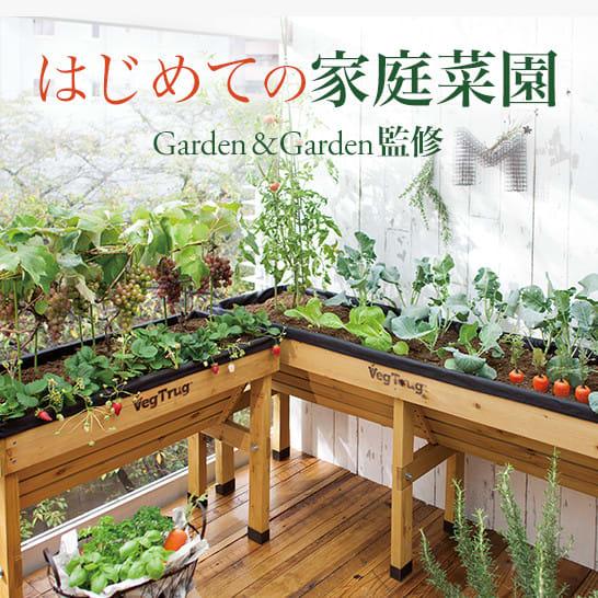 家庭菜園・ベランダ菜園・プランター菜園