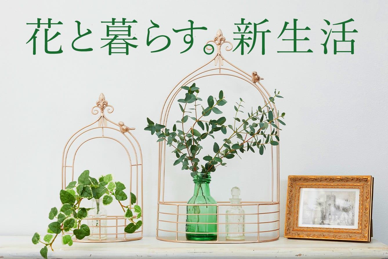花と緑で始める新生活