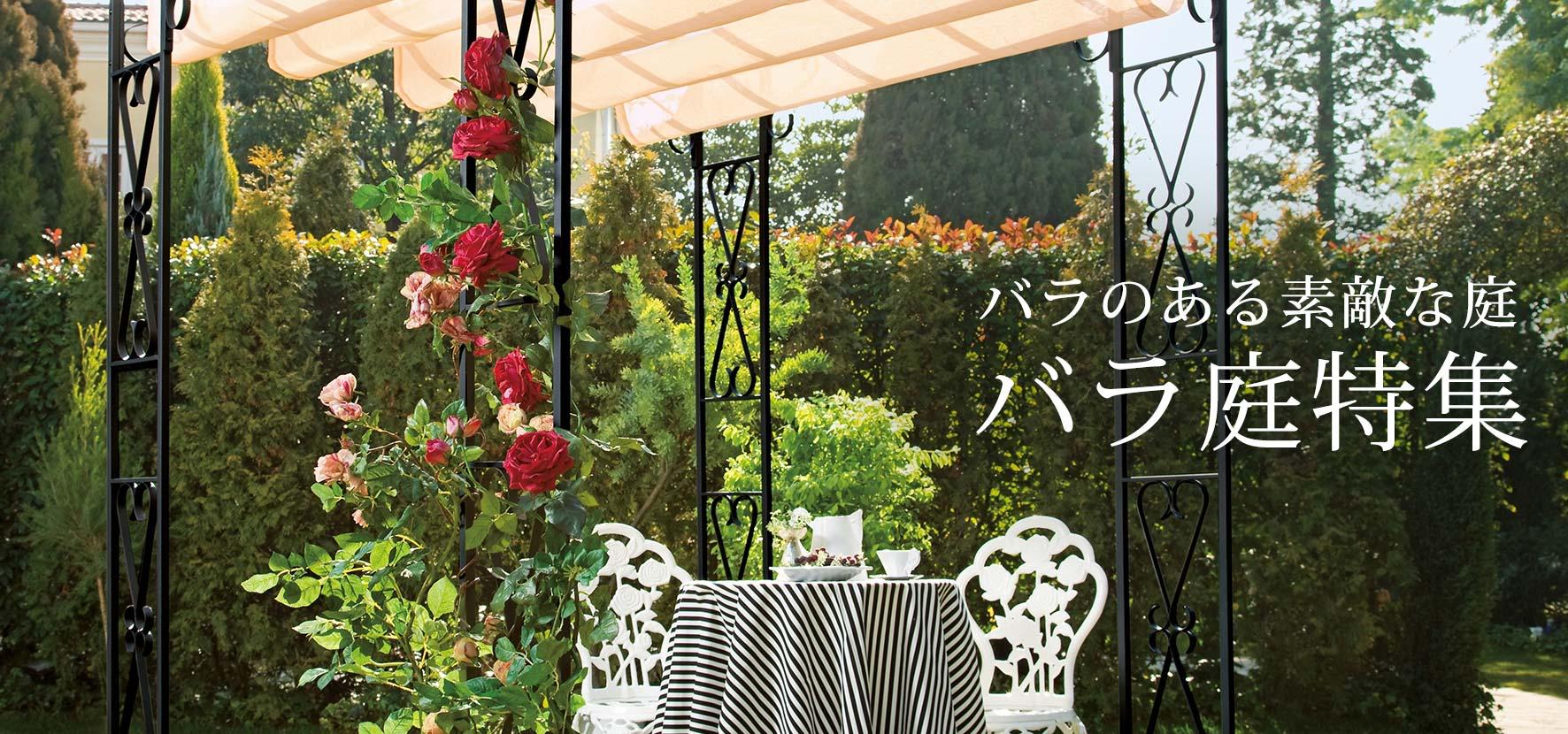 バラのある素敵な庭