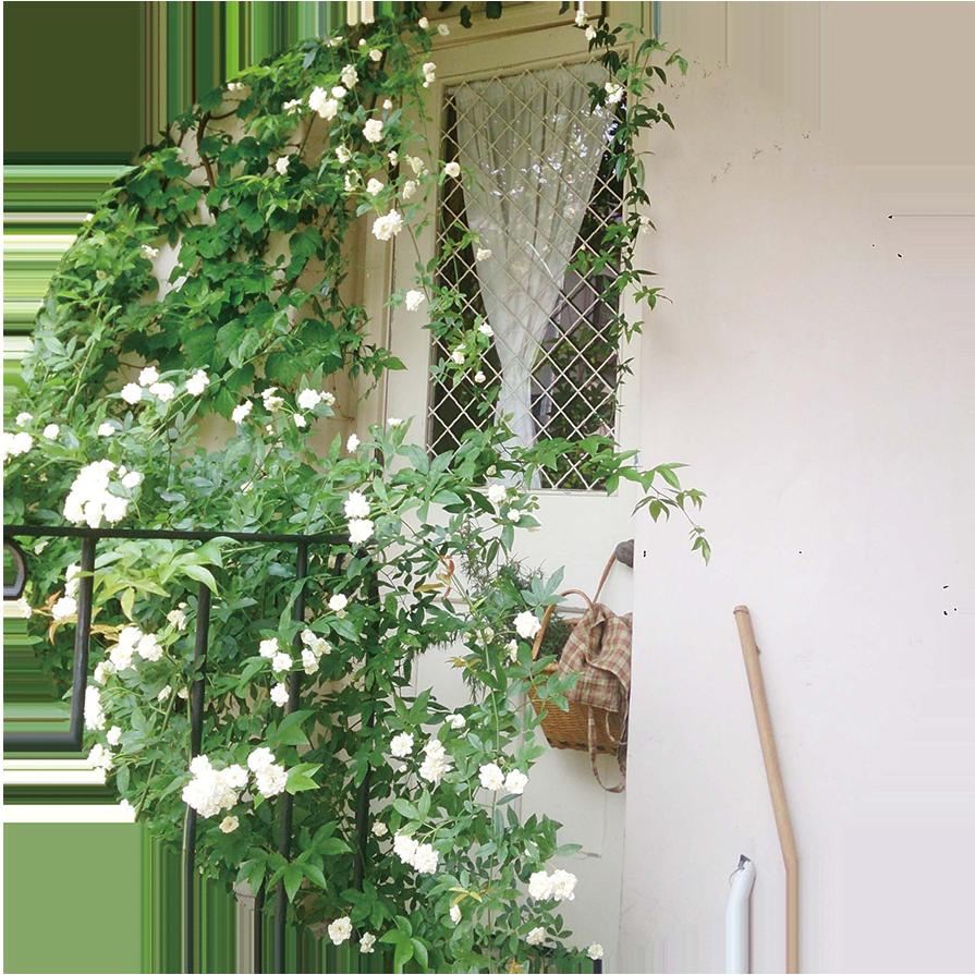 植栽だけでなく、床材・フェンス・小屋の施工などすべて手づくりのcotoriさんの庭。庭同様にフレンチテイストでまとめられたインテリアも注目を集めています。