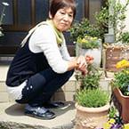 花壇の土を改良したら花がイキイキと咲きました。</br>