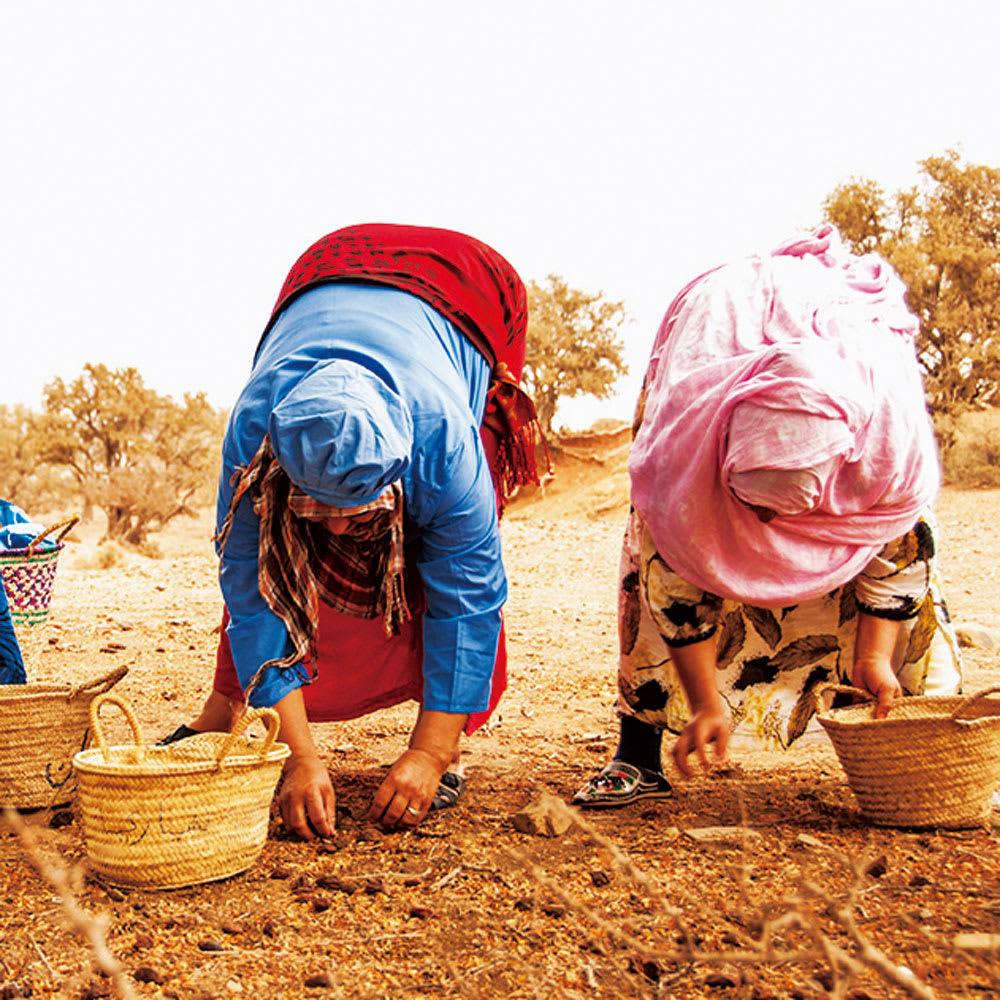 1.専用農地で栽培し、豊かに育った実を厳選して収穫
