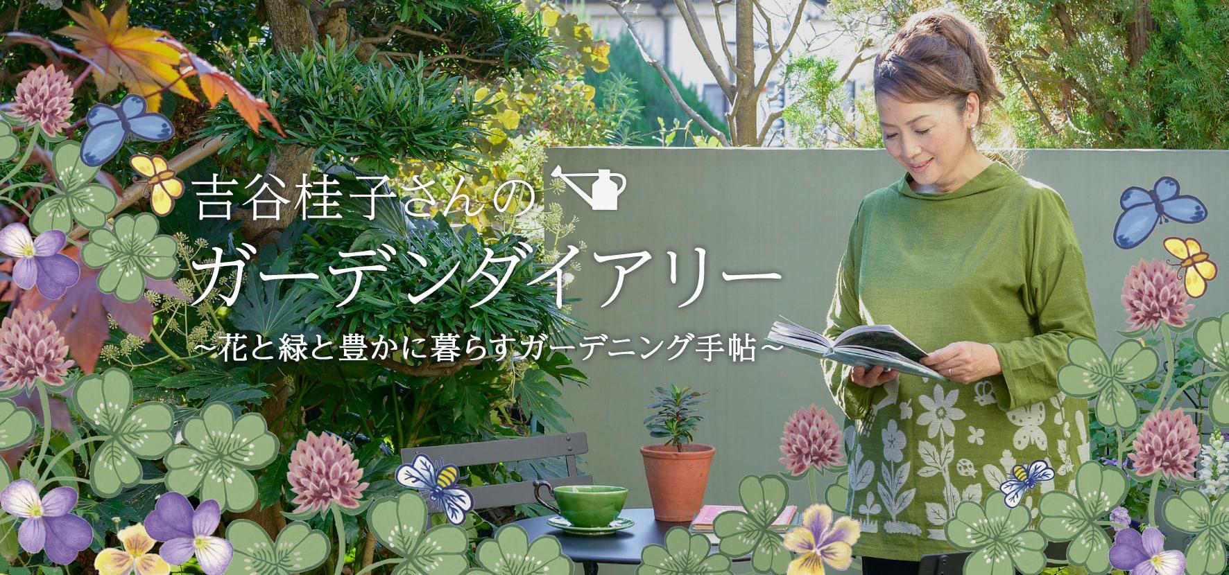 吉谷桂子さんのイギリスツアーの記事を見る