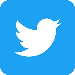 まずはこちらをフォロー!<br>「dinos公式」Twitterアカウント