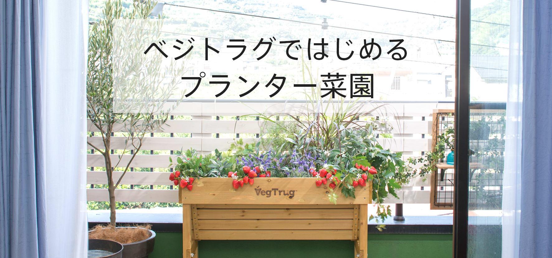 ベジトラグを使用した家庭菜園日記