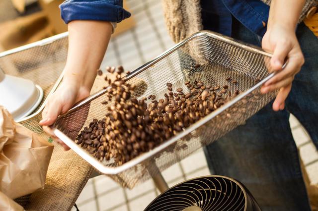 【MAME'S椎名香のコーヒーコラム Vol.4】焙煎でコーヒー豆はどう変わる?