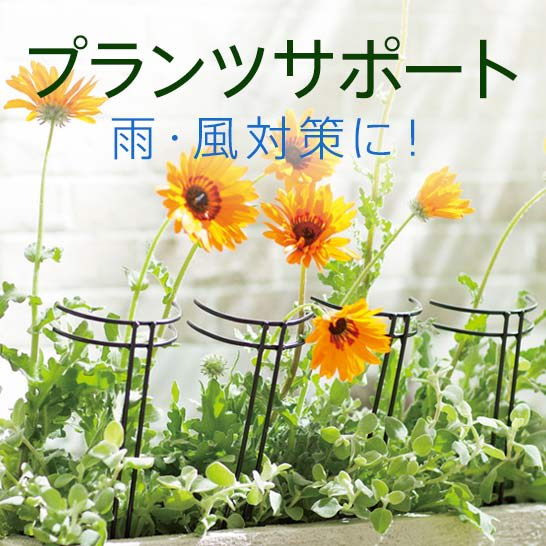 植物や花の雨・風対策に!プランツサポート