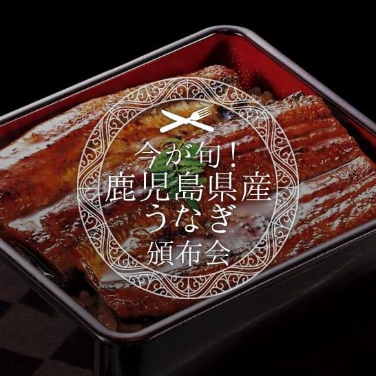 鹿児島県産うなぎ頒布会<span class=red>【単品購入より10%お得!】</span>