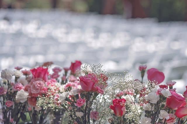 色とりどりのお花たち