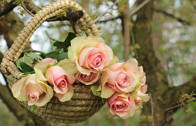 バスケットに飾られた白いバラ
