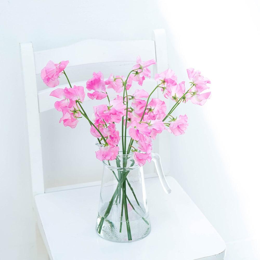 12か月のお花の定期便季節を感じて、素敵なおうち時間を!
