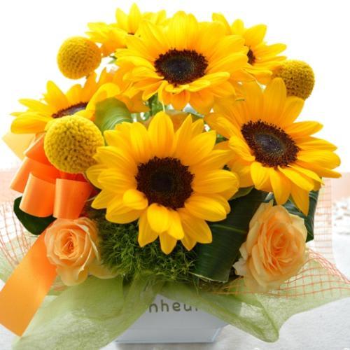 キュートなアレンジ OrangeSun (ヒマワリのフラワーアレンジメンント)イエローオレンジ系<br>3,300円(税込)
