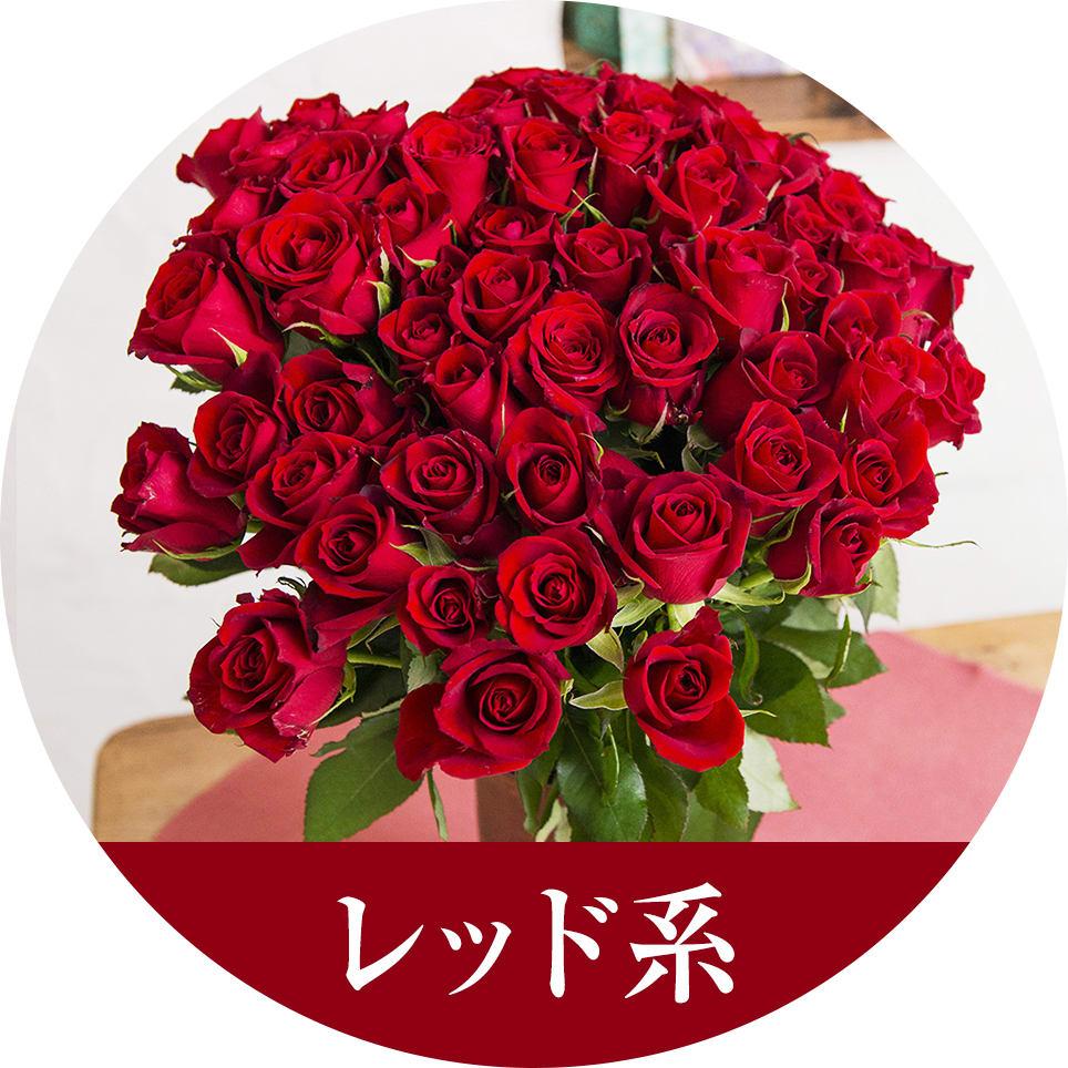 パートナーに贈るなら 赤いバラを
