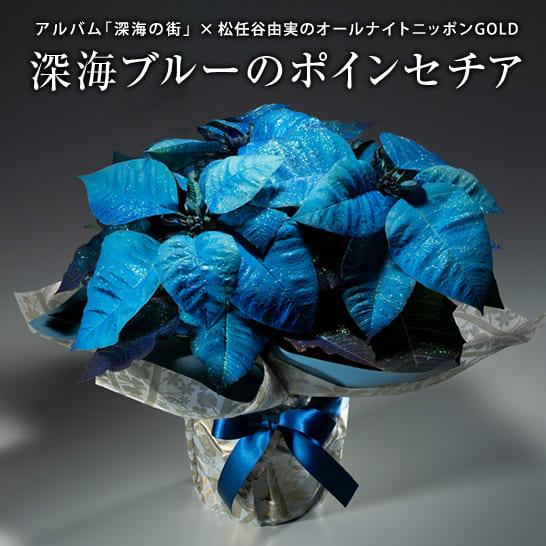 松任谷由実のオールナイトニッポンGOLD×アルバム「深海の街」コラボ企画 深海のブルーポインセチア