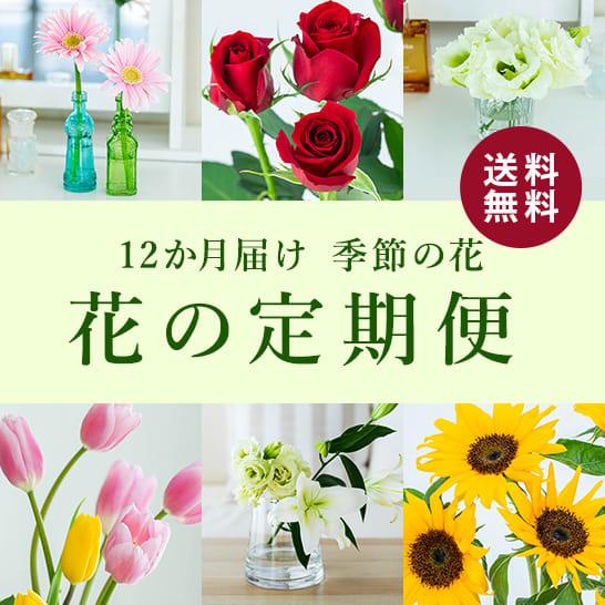 季節の花の定期便