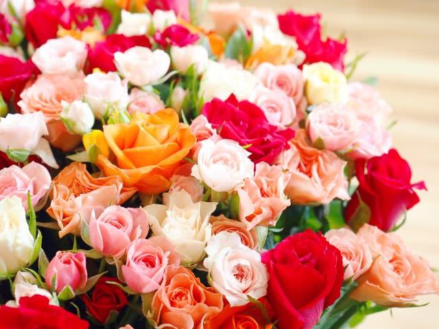 色々あるバラの品種。あなたはどのくらい知っていますか?