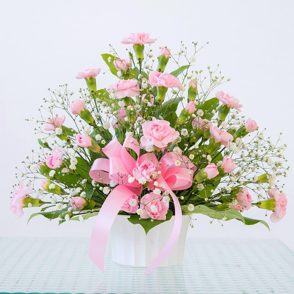 【 母の日ギフト】カーネーション トゥインクル(ピンク)<br>3,850円(税込)