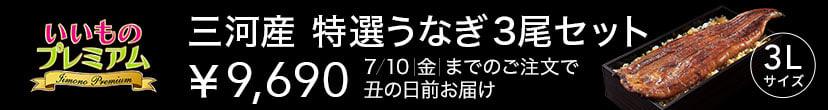 うなぎ(丑の日お届け最終日)