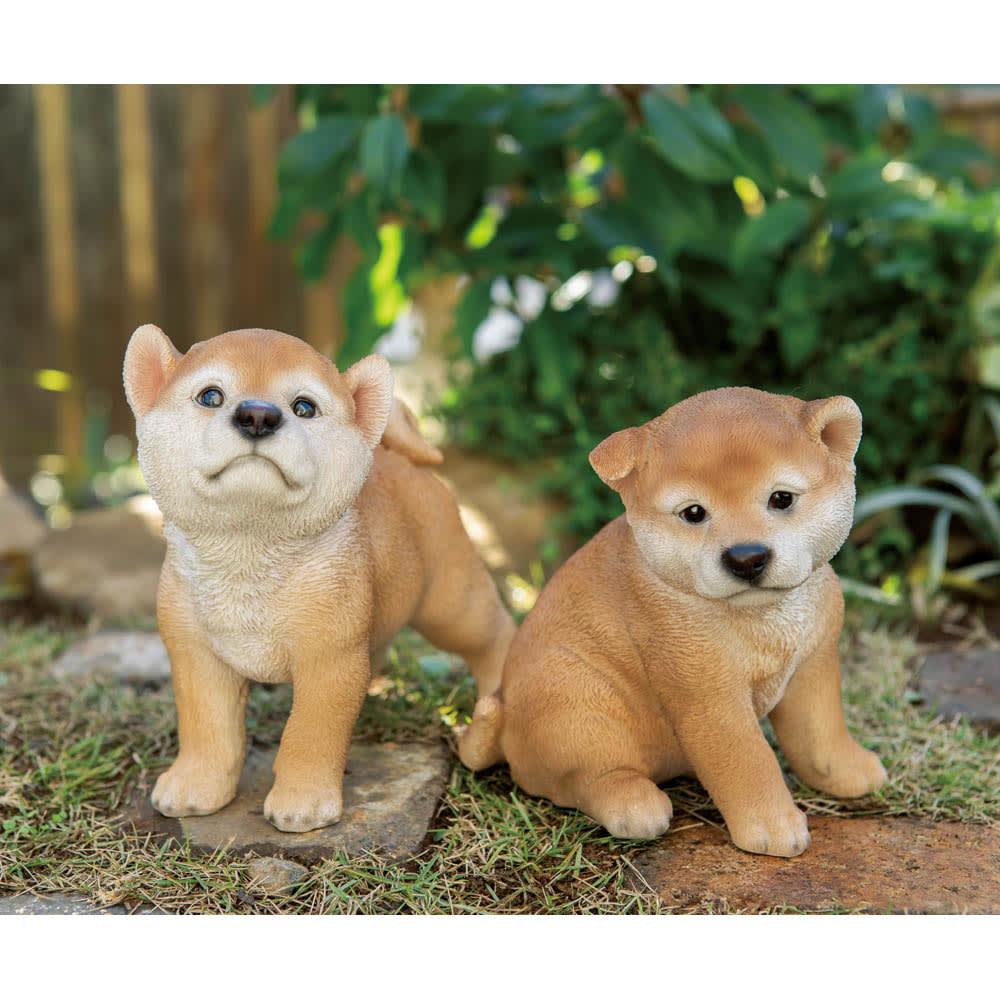 リアル犬のオーナメント 秋田犬 子犬2個組