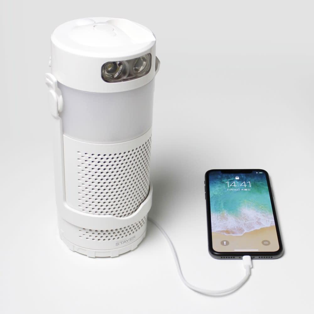 STAYAR 塩と水で発電できる マグネ充電池