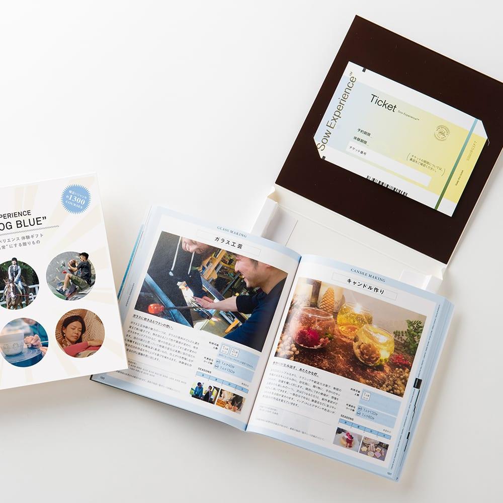 体験ギフト・総合版カタログ BLUE