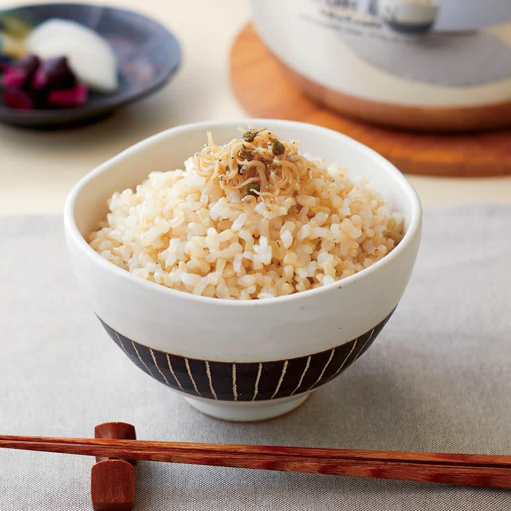 vitacraft/ビタクラフト 全面5層のご飯鍋  玄米
