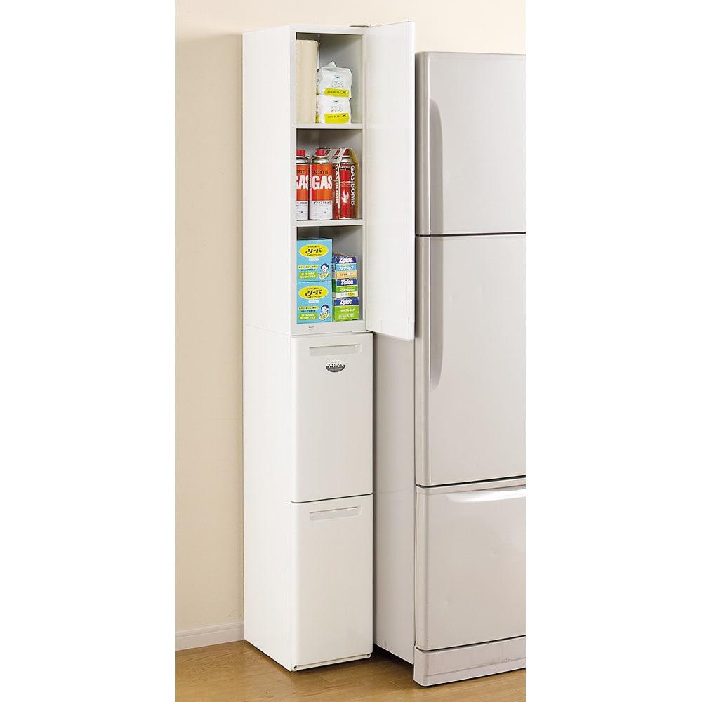 キッチンすき間収納 トールタイプダストボックス 2分別 本体幅が25cm狭いキッチンでお困りの方はぜひ!