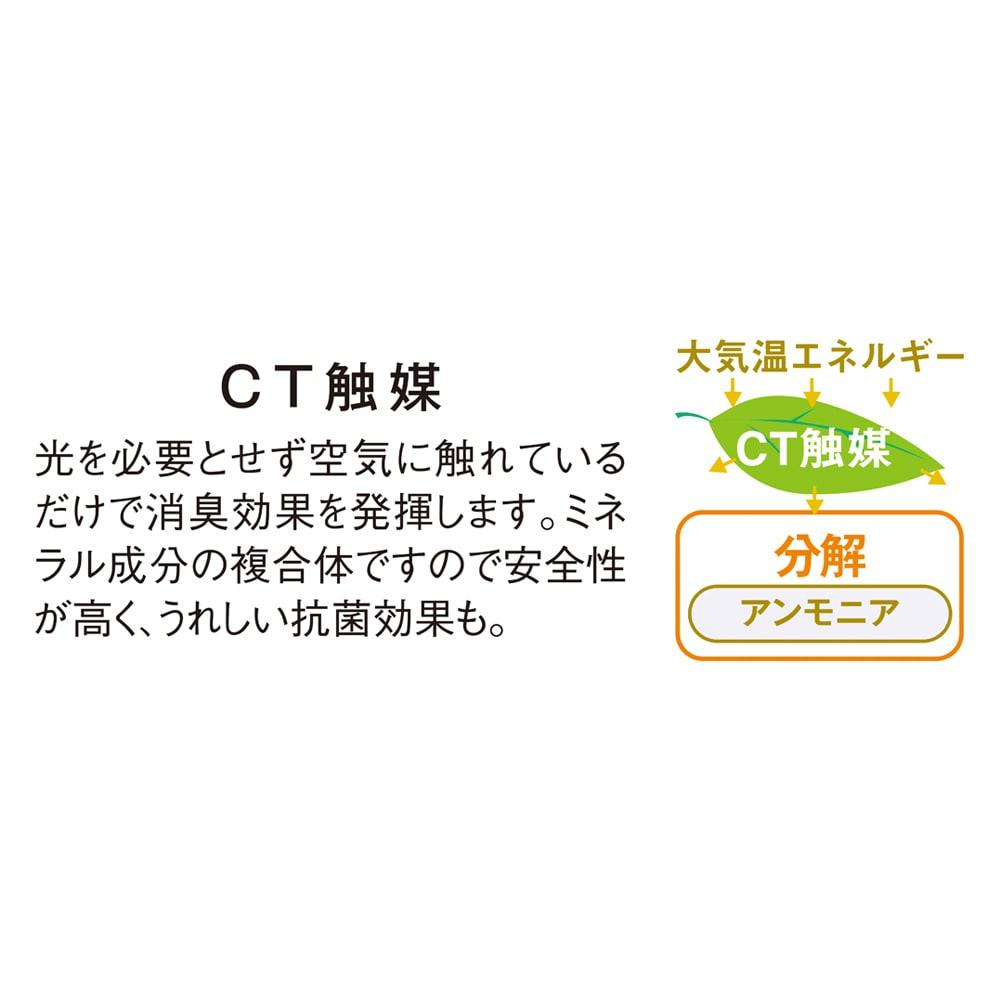 CT触媒インテリアグリーン ドナセラユッカ 高さ132cm 光のあまり入らない場所でもCT触媒の効果によって、アンモニア臭やホルムアルデヒドを分解。