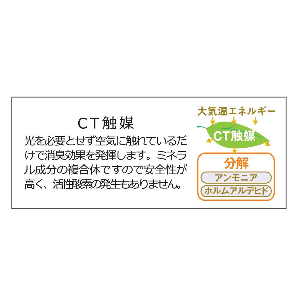 CT触媒インテリアグリーン ウンベラータ 高さ138cm