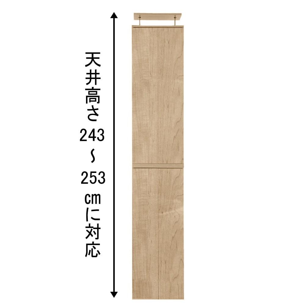 並べても使える 突っ張り式ユニットシューズボックス 天井高さ244~254cm用・幅45cm[紳士靴対応] ※写真は幅45天井高さ243~253cmタイプです。