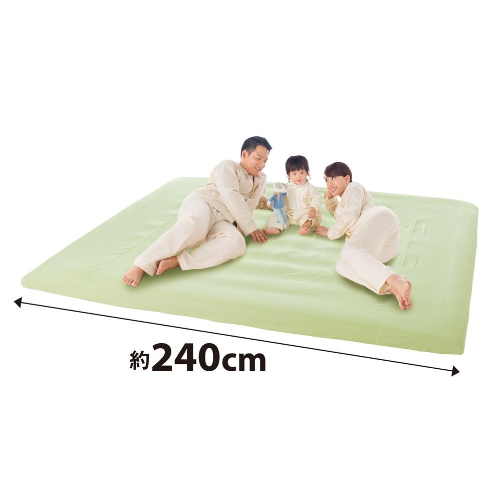 防汚・防塵・防ダニ アンチストレス(R)ベッドシーツ ファミリーサイズ(約幅200・220・240cm) (ウ)ライトグリーン ファミリーサイズ 汚れに強いので、ご家族におすすめです。 マットレスはもちろん、抗菌コンパクト&ワイド敷布団にも。幅320cmまであります。