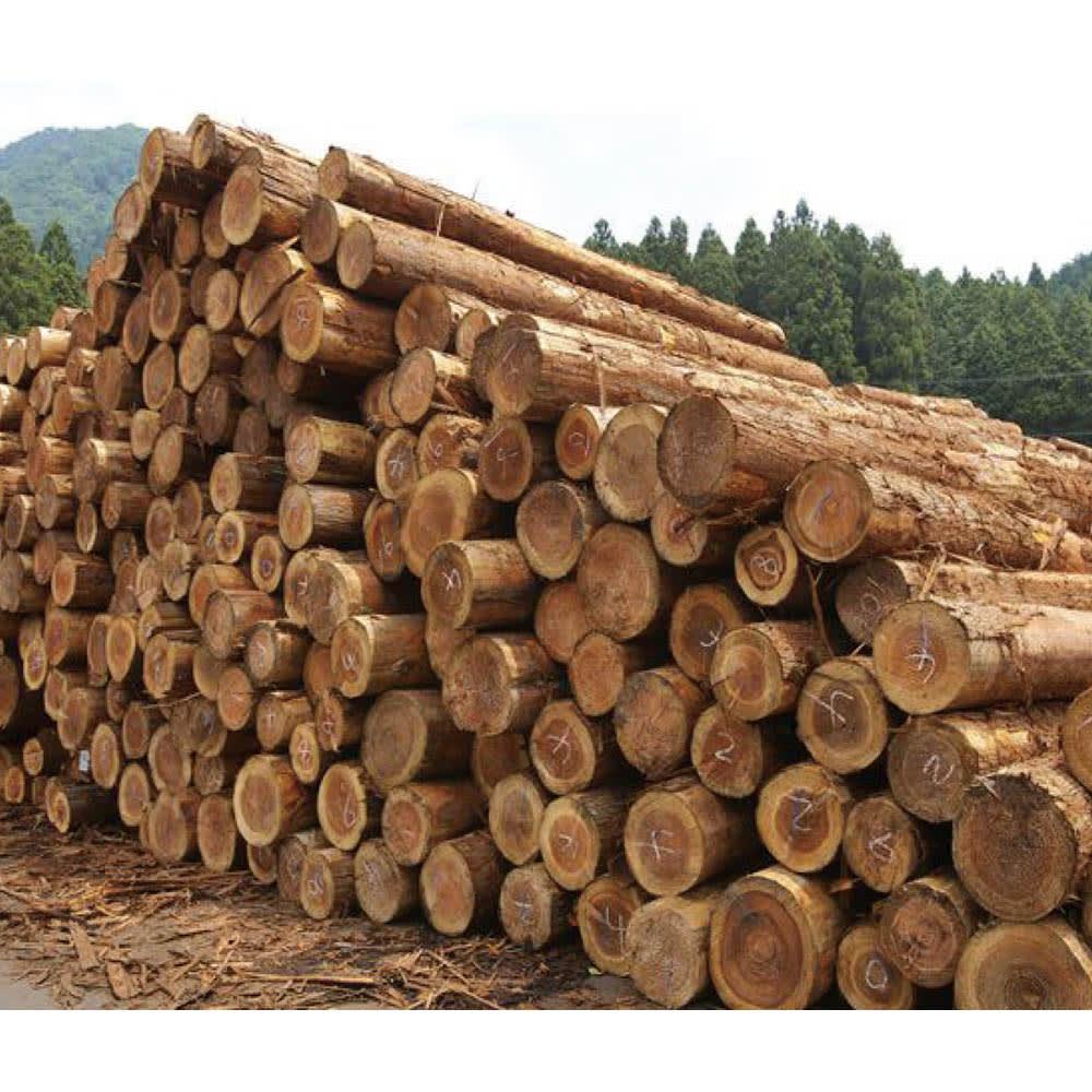 国産杉 薄型頑丈タワーシェルフ 幅60高さ89.5cm 国内生産にこだわった一貫ライン。