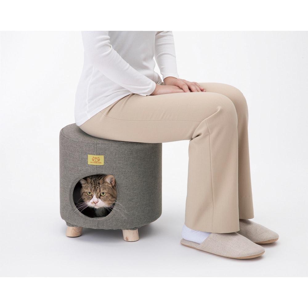 座れるキャットハウス スツールとしても使用可能。