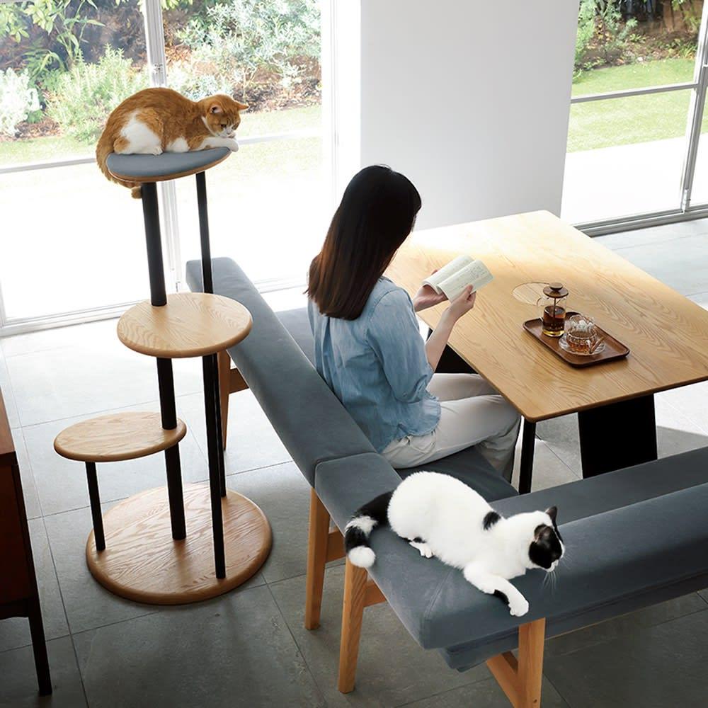 オーク天然木の ネコとくつろぐ ダイニングテーブル コーディネート例(ア)ナチュラル ※お届けはダイニングテーブルのみになります。