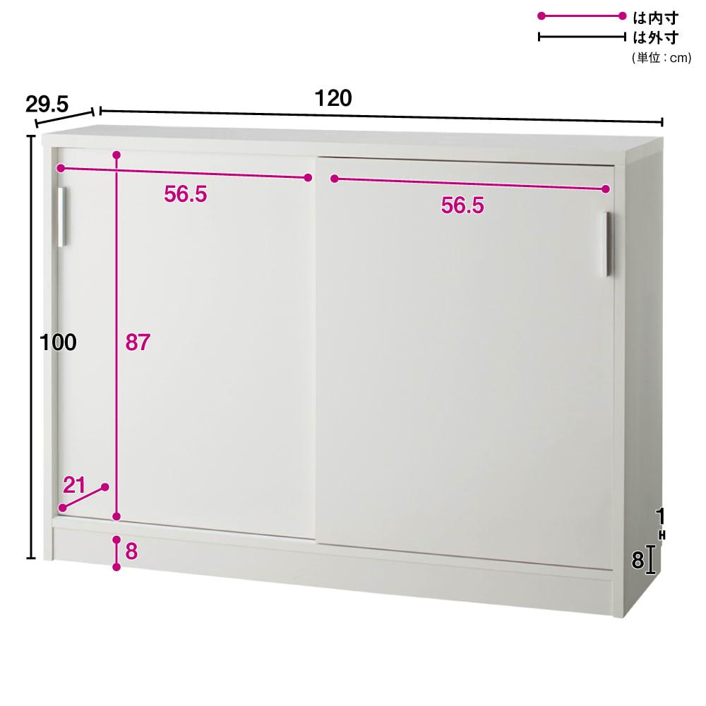 引き戸カウンター下収納庫 奥行29.5高さ100cmタイプ 収納庫・幅120cm