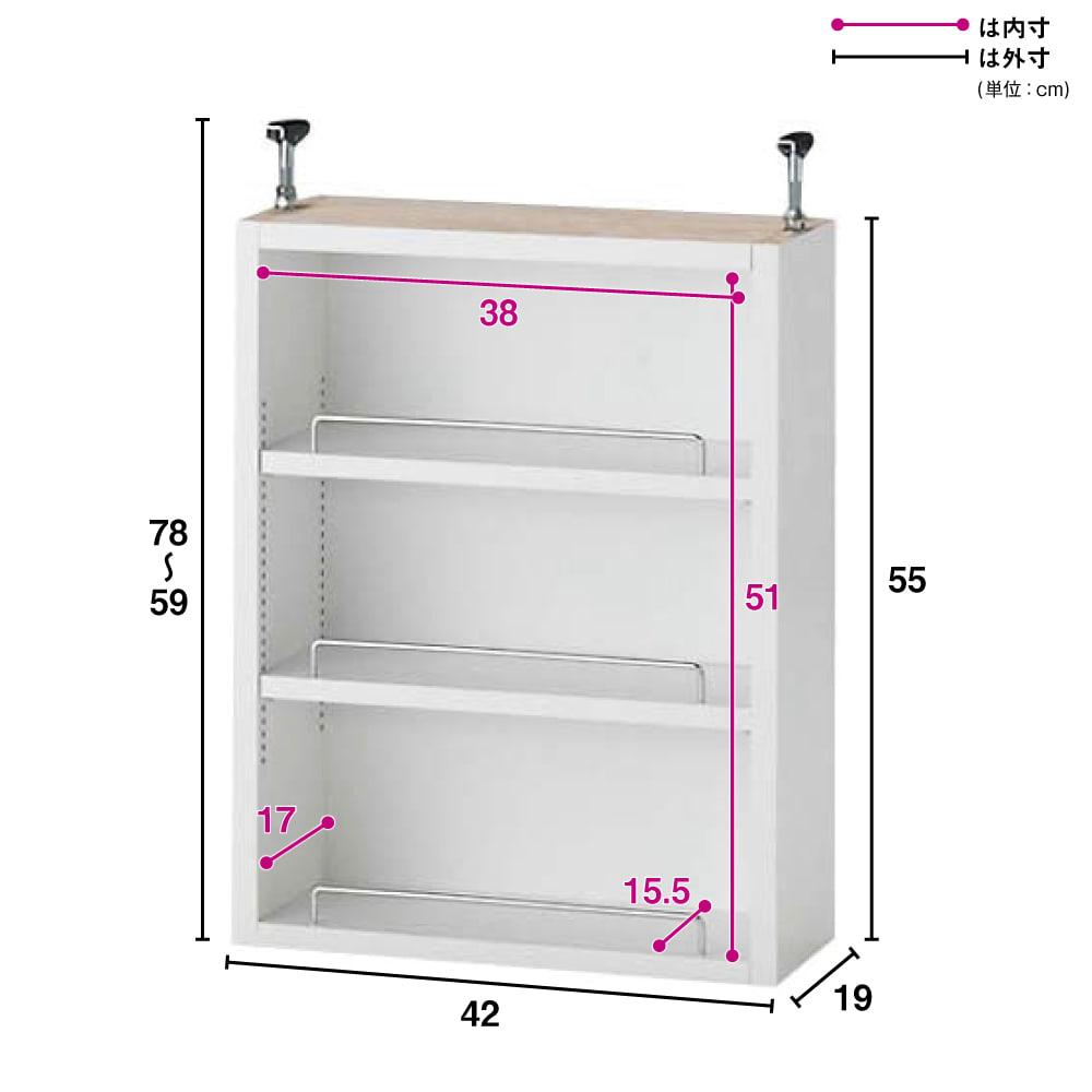 1cmピッチ薄型壁面書棚 奥行19cm 幅42cm 上置き高さ55cm オープン