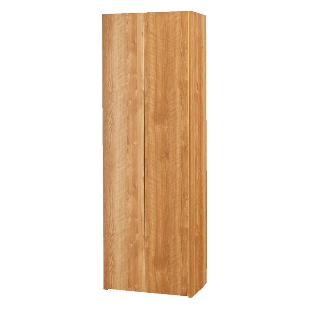 エントランス納戸シューズボックス バー付き 幅60cm (イ)ホワイト