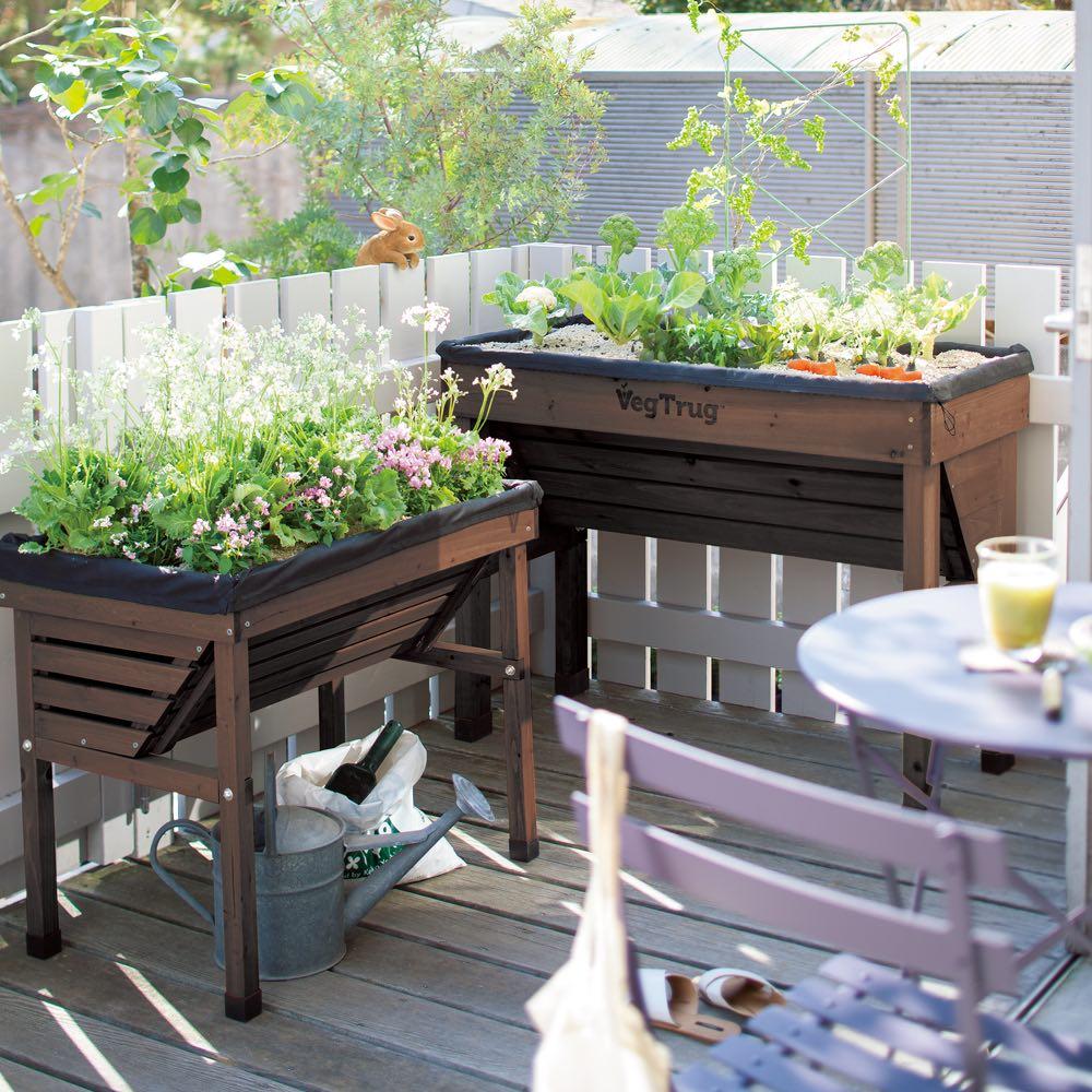 50周年オリジナルカラー菜園プランター ベジトラグ バルコニー ダークブラウン プランター・鉢・フラワースタンド