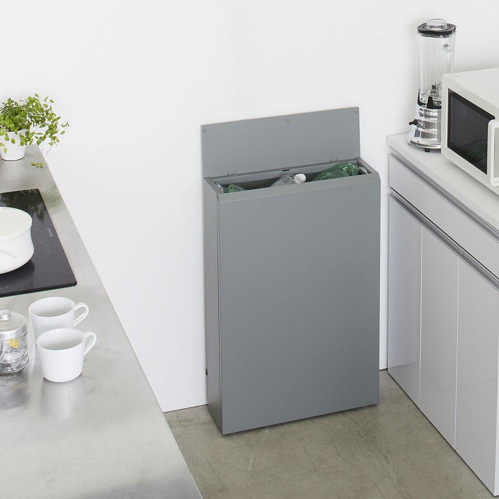 キッチン奥にも置ける 奥行スリムダストボックス 大タイプ(幅50cm・奥行18cm・高さ75.5cm) ホワイト 分別ゴミ箱