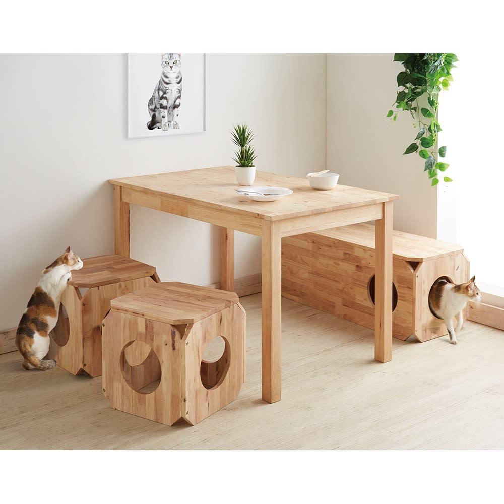 キャトハス ペットベンチ S (ペットと一緒に使える天然木ベンチ) コーディネート例 ダイニングベンチとして。 ※写真はSサイズを2個、Lサイズを1個使用しています。表示価格はSサイズ1個のものです。