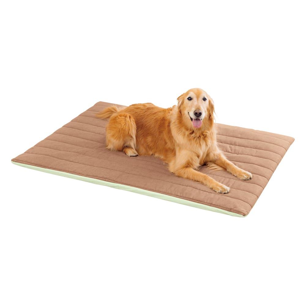 ペットのための敷布団 (あったかカバー付き) ゆったりLサイズまでご用意!
