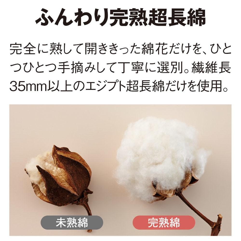【毛布の老舗 三井毛織】エジプト超長綿やわらか綿毛布 掛け毛布 完全に熟して開ききった綿花だけを一つ一つ手摘みで丁寧に選別