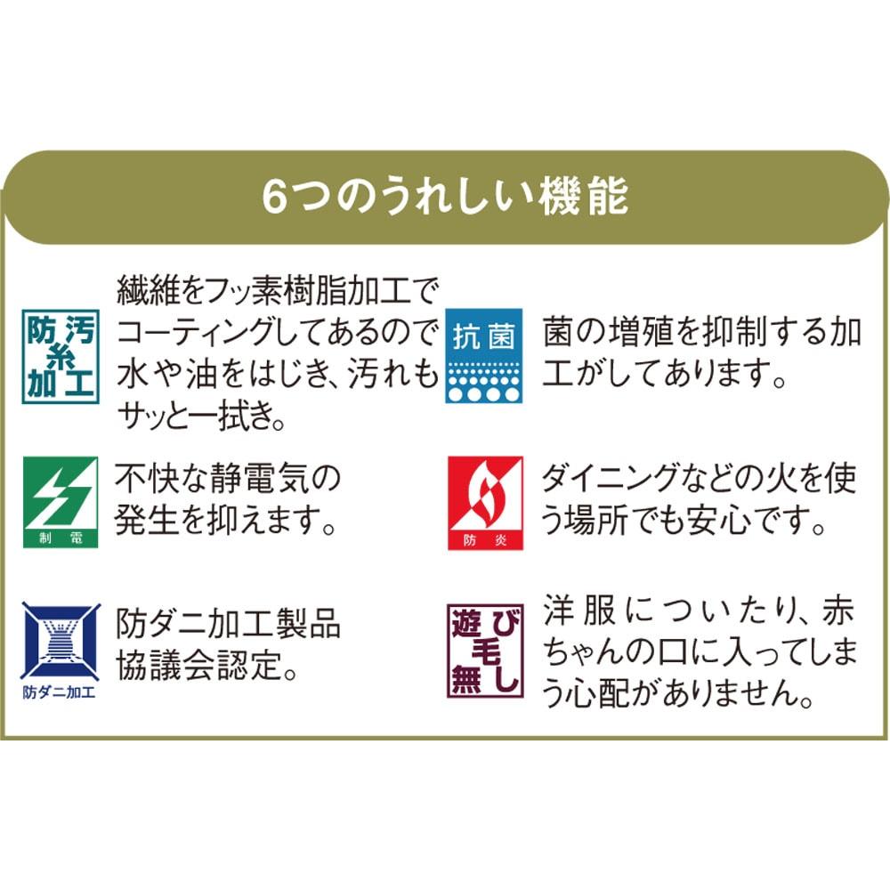 東リ 6つの機能ラグ 6つの頼れる機能が嬉しい。