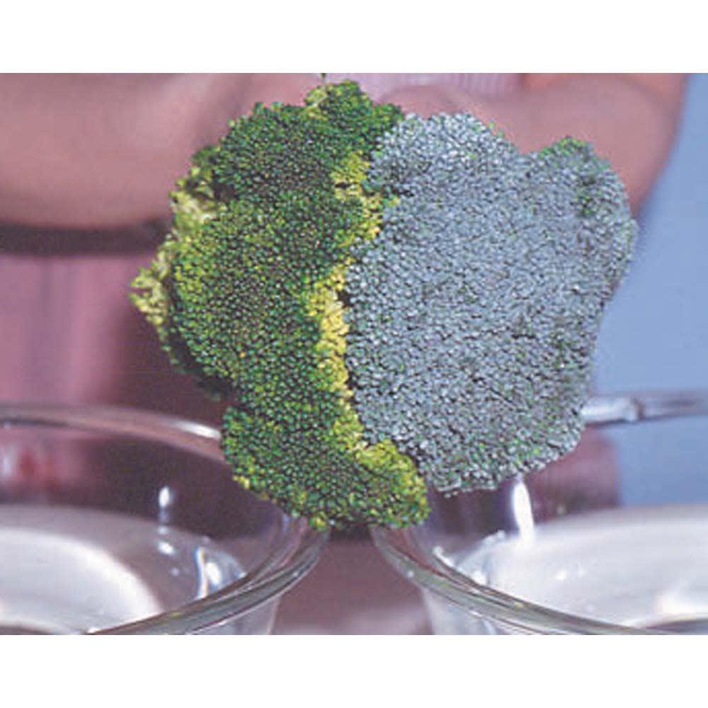 食器・野菜用洗剤ドクター・ハーブ2リットル(ホワイトラベル) 洗浄後 洗浄前 安全性が高いので野菜を洗っても。ブロッコリーもこんなにきれいに。