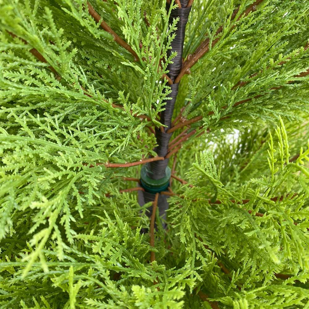 人工観葉植物ゴールドクレスト 高さ160cm 中央部で取り付け式