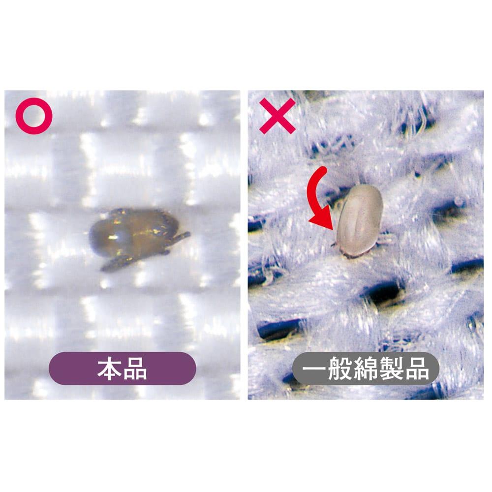 ミクロガード(R)プレミアム布団シリーズ 洗える2枚合わせ掛け布団 防ダニ剤なしでダニ対策できます 防ダニ剤不使用なので、小さなお子さまも安心。ダニはもちろん、さらに微細なフンや死骸さえも通しにくい生地です。