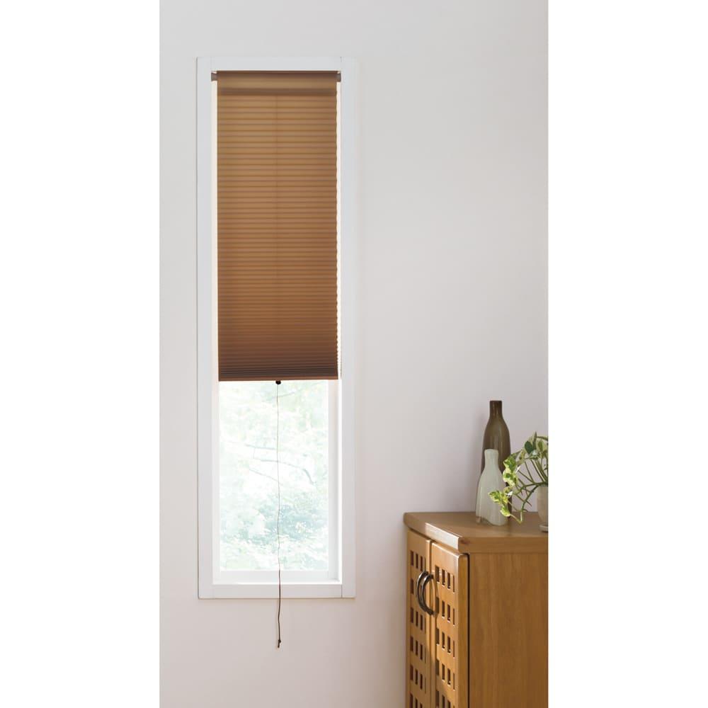 ハニカム構造の小窓用シェード(つっぱりポール付き) (エ)ブラウン 玄関